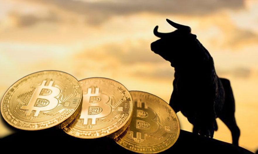 Bitcoin-Bull